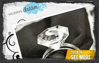 Wedding Dream Logo & Website